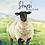 Thumbnail: Stupsi das Schaf