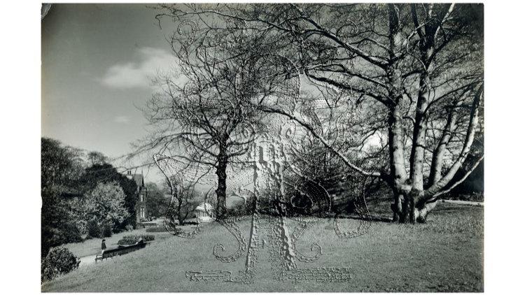 Vale Park, New Brighton