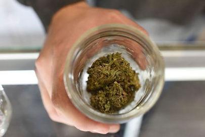 Herbal-Dispatch.jpg