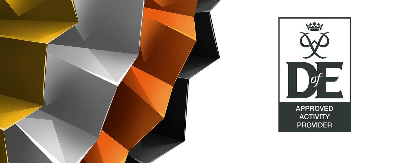 Dof E wip Banner website BSGold.jpg