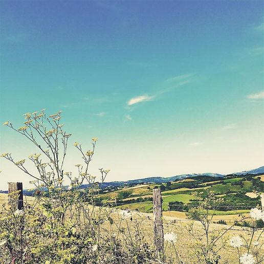 peita-pays basque.jpg