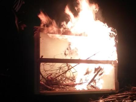 Burned literature