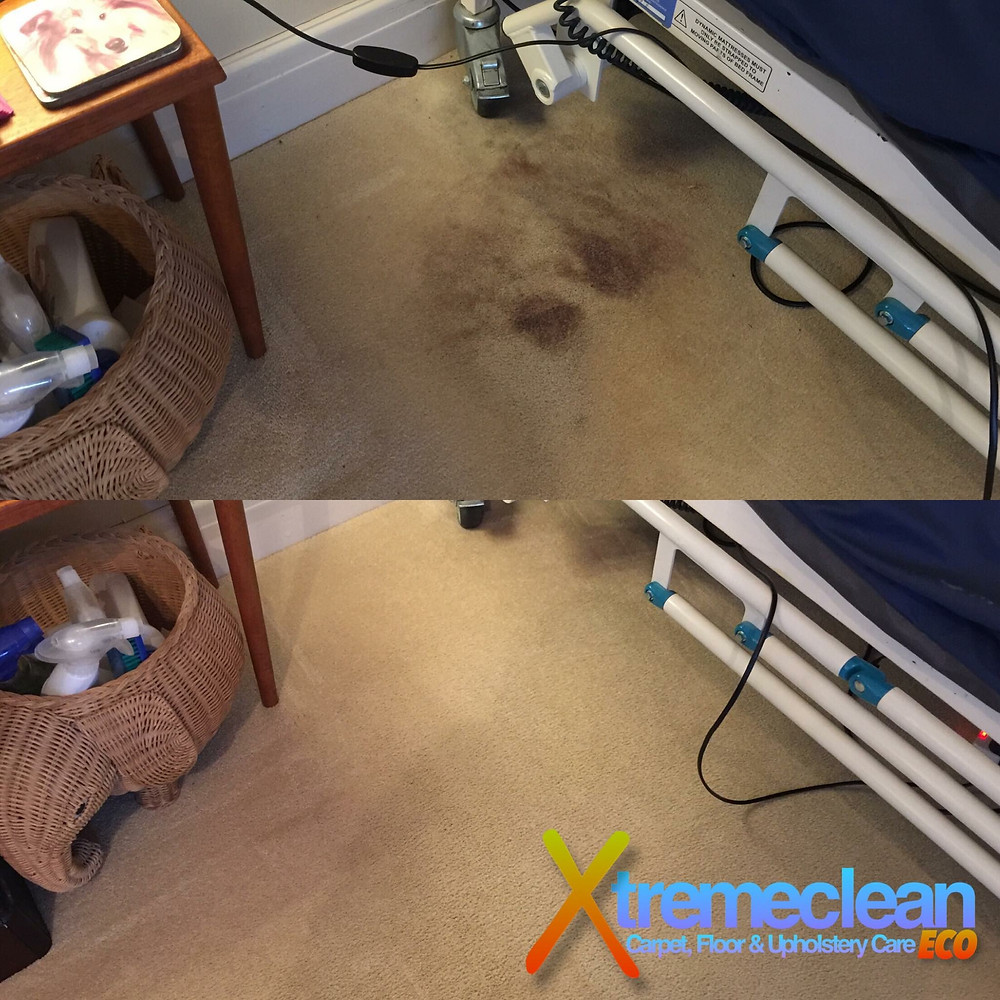 Carpets & Blood Stains