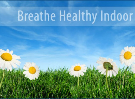 A CLEAN CARPET IMPROVES YOUR INDOOR AIR QUALITY