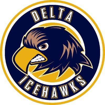 delta ice hawks logo