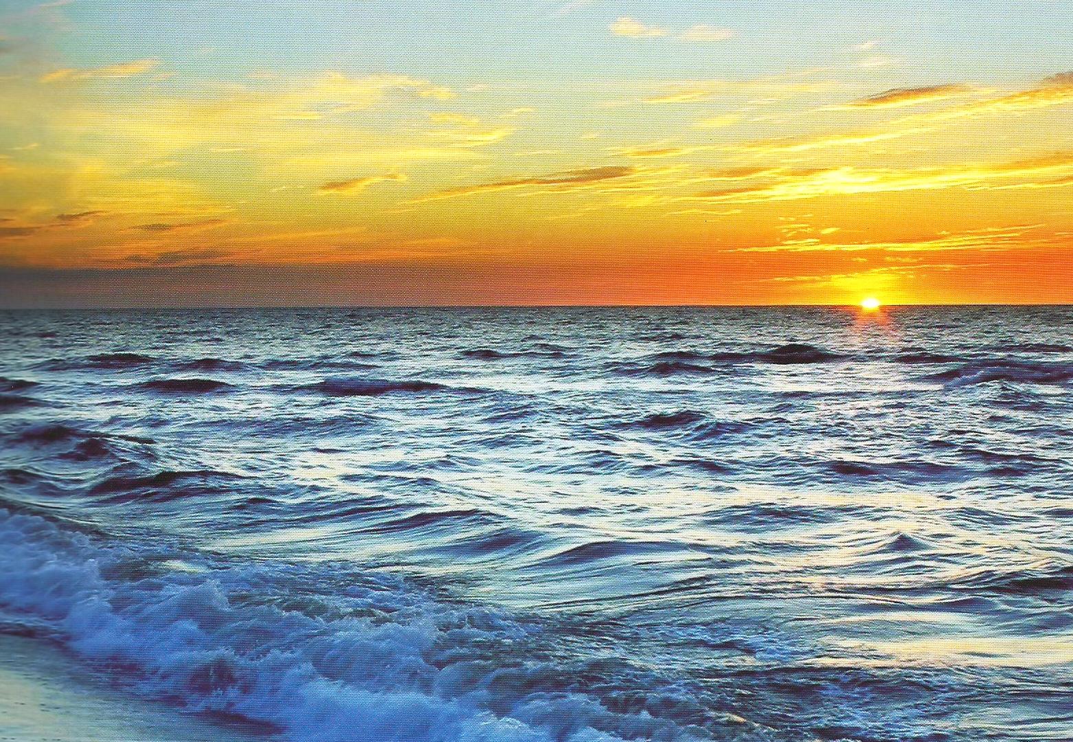 Scan zee (2).tif