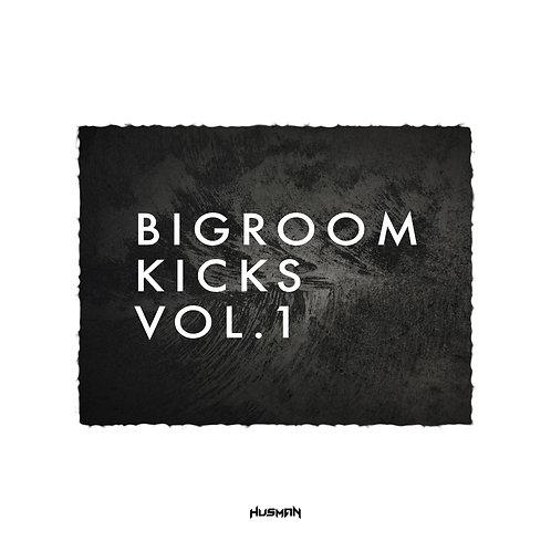 Big Room Kicks Vol. 1