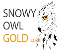 Snowy Owl Logo - square - large - transp