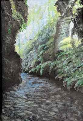 NZ Gorge
