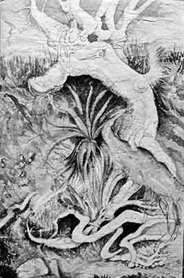 NZ Beachside Doodle