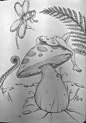 NZ Daydream Doodle