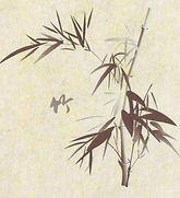 Chi gong (2).jpg