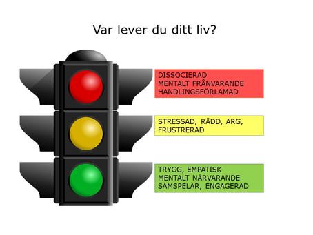 Vårt nervsystem är som ett trafikljus när det handlar om stress.