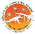 Capoeira logo - Orange and yellow.png