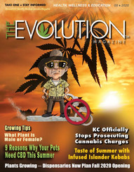 The Evolution Magazine - Aug 2020 - Pg 6