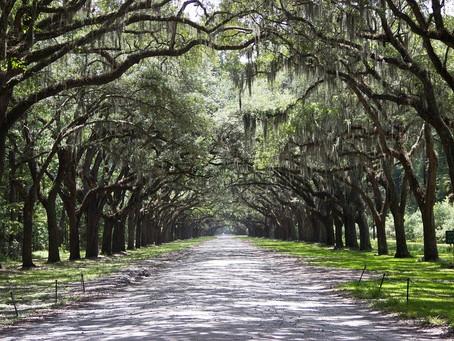 10 Reasons to Visit Savannah, GA in 2020