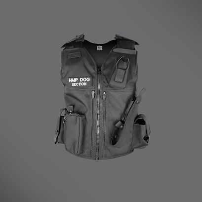 Dog section equipment vest
