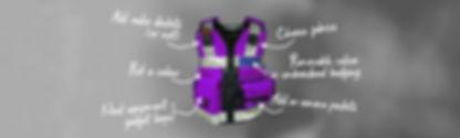 Work Equipment Vest Customise.jpg