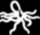 Octopus logos Maroon 8 Tentacles.png