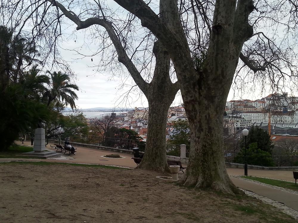 Lissabonner Jardim do Torel im Winter