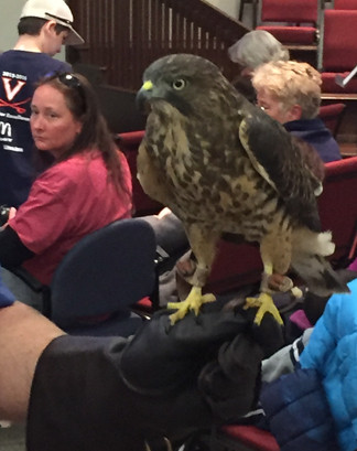 Virginia Wildlife Presentation