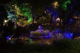 Garden-7712.jpg