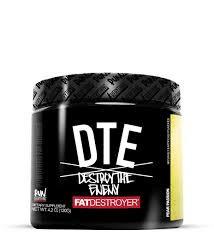 DTE:Destroy The Enemy-Fat Destroyer