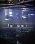 Under Indonesia.jpg