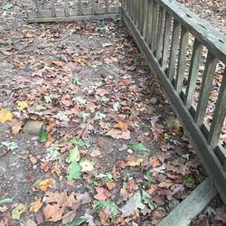 old cedar railing