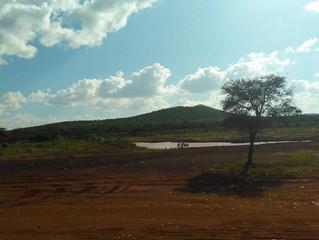 Girovagando per il Kenya