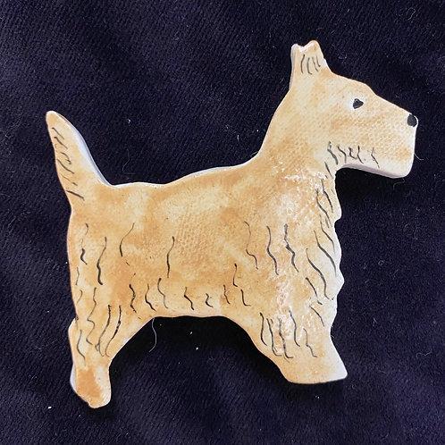 Golden Terrier