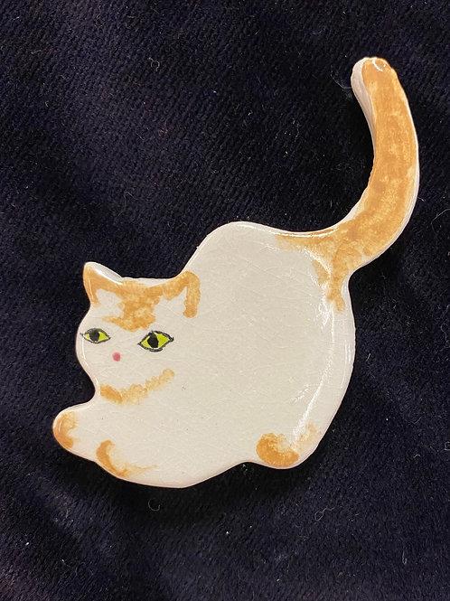 Orange tail up cat