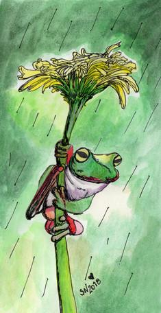 Quirky umbrella/Chapéu de chuva engraçado