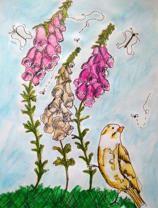 bird and flowers/Pássaro e flores