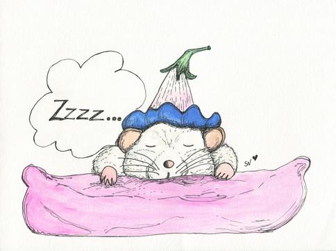 Sleeping on it.../A dormir sobre o assunto...