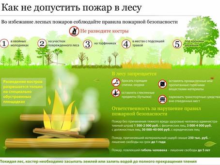 Пожароопасный сезон: соблюдая правила, убережемся от пожара!