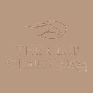 flyinghorse.png