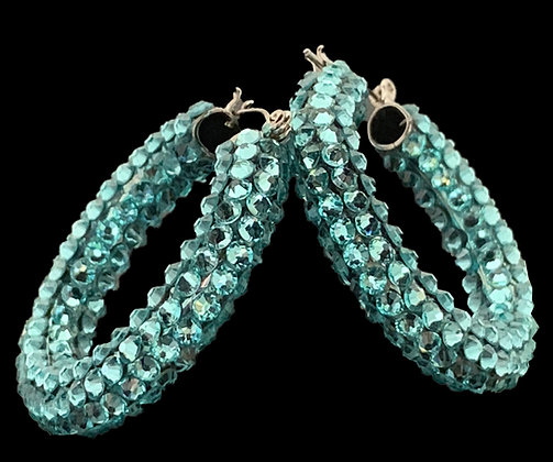 DSC - Aquamarine Earrings
