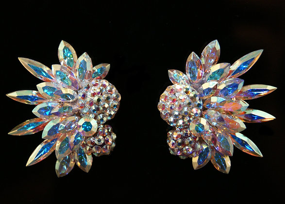 FC105 Swarovski Earrings
