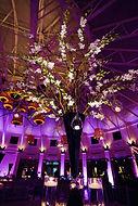 Durham NC wedding up lighting