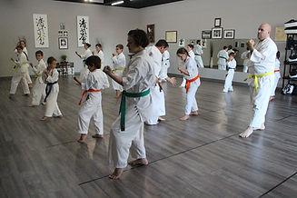 Karaté St-Jean. karatestjean.com. Karaté St-Jean. karatestjean.com. Un club dynamique. 15.jpg