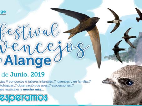 Llega el III Festival de vencejos de Alange