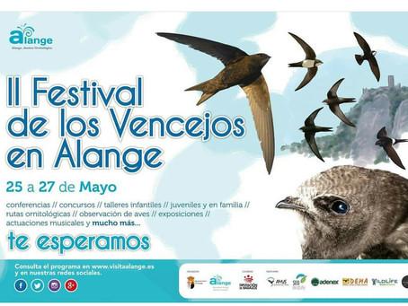 II Festival de Vencejos de Alange, un gran éxito