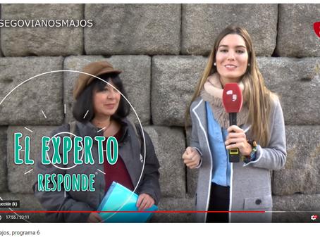 """Los vencejos también son """"Segovianos majos"""""""