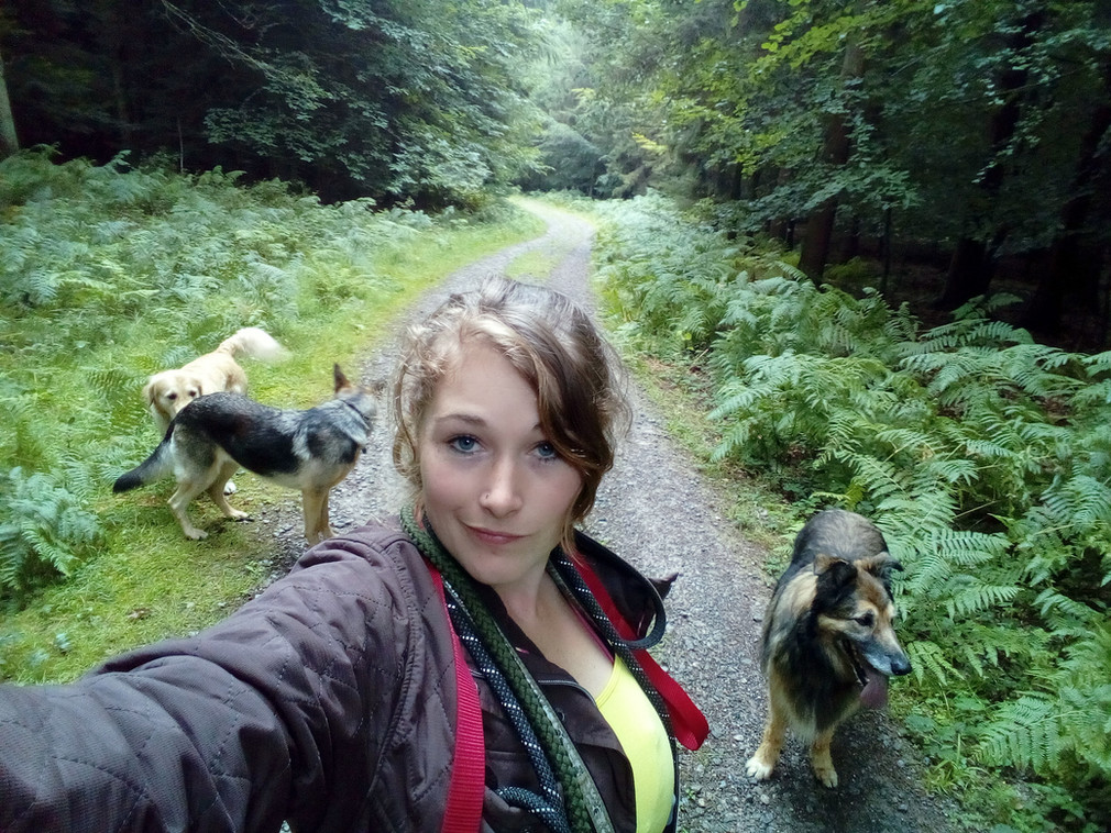 Loving dog walking with my wednesday crew even if it is a bit wet