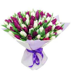 55 бело-фиолетовых