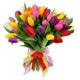 45 разноцветных тюльпанов