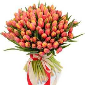 75 красно-желтых тюльпанов