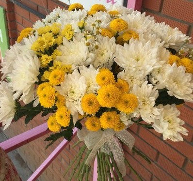 Хризантемы желто-белые