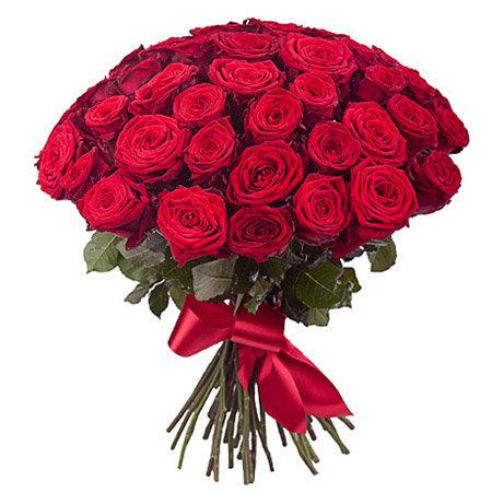 47 красных роз